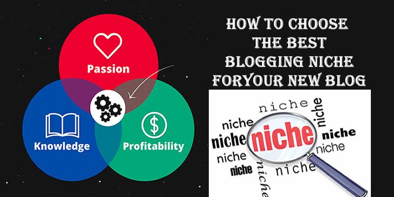 Best Blog Niche